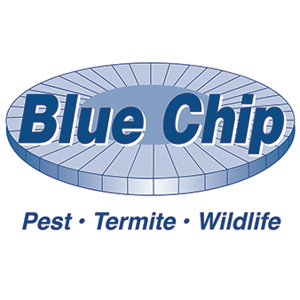 Blue Chip Exterminating